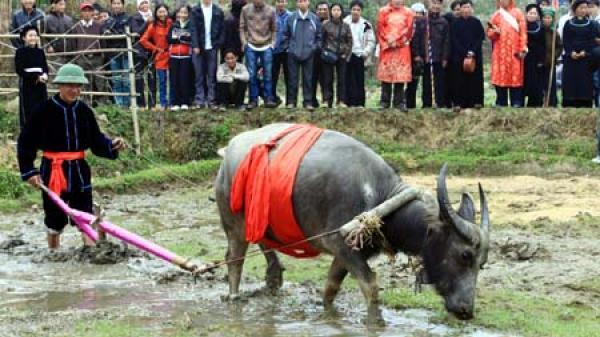 Thái Nguyên: Lễ hội Lồng Tồng của người Tày là di sản văn hóa phi vật thể quốc gia