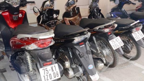 Bắt giữ đối tượng ở Thái Nguyên cùng đồng bọn trong đường dây trộm cắp xe máy liên tỉnh