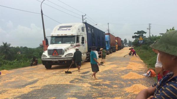 Tài xế van xin dân đừng hôi của hàng tấn ngô rơi từ container