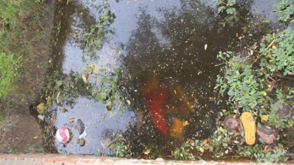 Đi uống cà phê tá hỏa phát hiện 2 t.hi th.ể trồi lên dưới mương nước