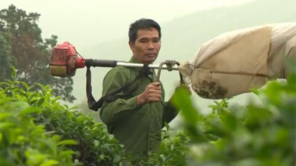 Ngưỡng mộ người nông dân nghèo sáng chế máy hút sâu cho cây chè