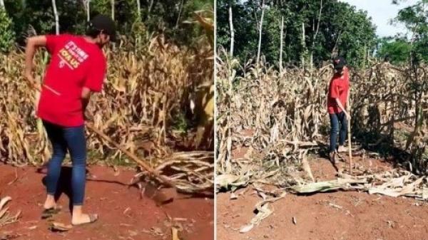 Lạ đời như H'Hen Niê: Tháng trước 'gây bão' Miss Universe, 30 ngày sau về quê mang dép lê cuốc ruộng bắp