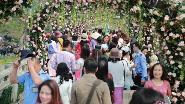 Nhanh chân check-in Lễ hội hoa hồng ngay gần Thái Nguyên trước khi về quê ăn Tết