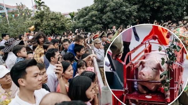 """Bắc Ninh: Hàng trăm người dân tập trung chứng kiến nghi lễ ch.ém lợn kín ngày đầu năm, m.áu 2 """"ông Ỉn"""" chảy lênh láng"""
