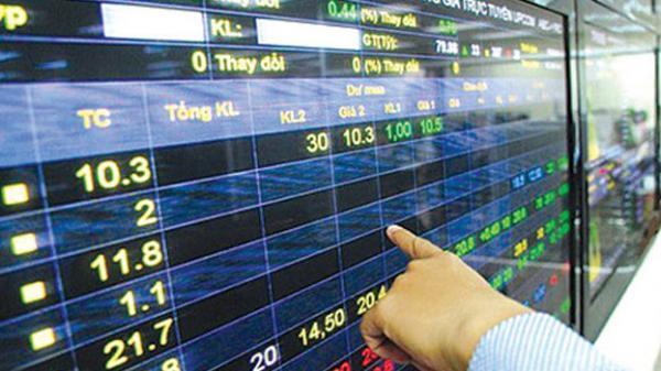 Thao túng cổ phiếu AMV, một cá nhân ở Hải Phòng bị phạt 550 triệu đồng