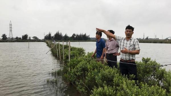 Hải Phòng: Dân đòi bồi thường đất, chính quyền nói không đủ điều kiện