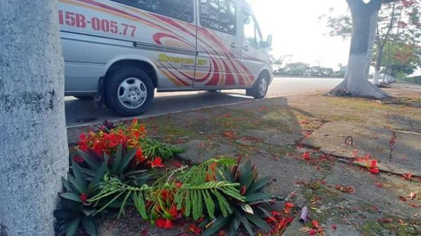 Hải Phòng: Dân mạng bức xúc với người vặt hoa phượng chụp ảnh