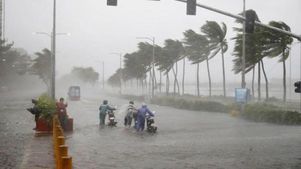 Cơn bão số 2 mang tên MUN đang cách đất liền các tỉnh Quảng Ninh - Hải Phòng khoảng 410km