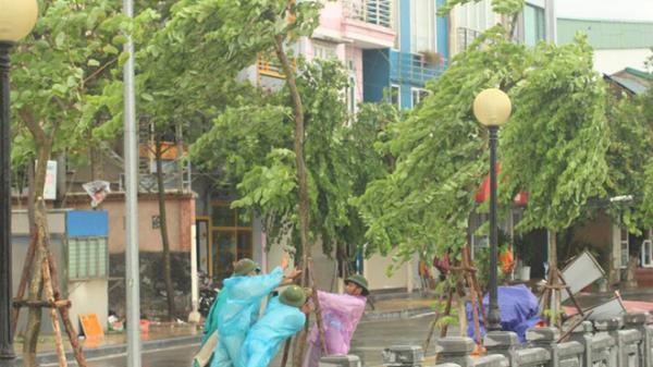 Bão số 3 giật cấp 11 sẽ đổ bộ vào Quảng Ninh - Hải Phòng vào trưa mai