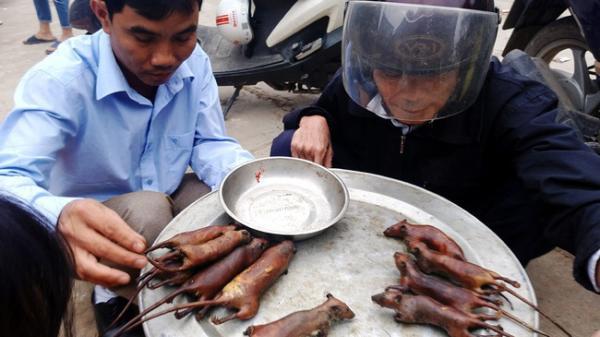 """""""Đột kích"""" nơi phụ nữ, trẻ nhỏ thích ăn thịt chuột hơn thịt gà"""