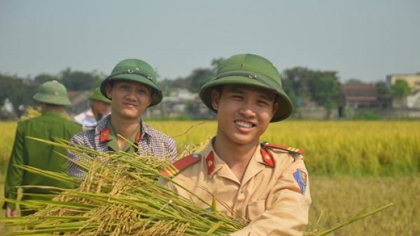 Thanh Hóa: Ấm áp hình ảnh chiến sĩ công an gặt lúa giúp dân