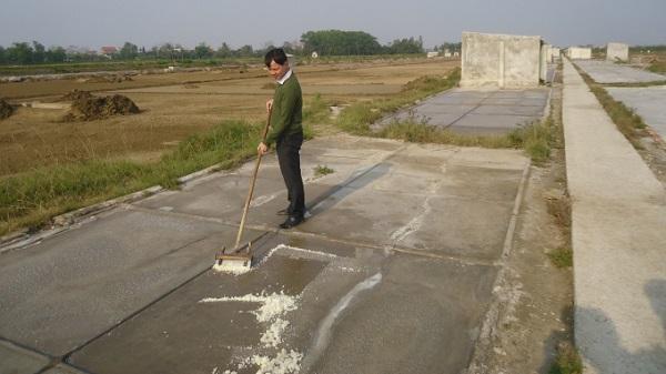 Thanh Hóa: Diêm dân bỏ nghề vì rớt giá