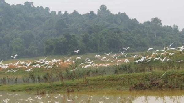Đánh thức tiềm năng du lịch sinh thái tại Thanh Hóa