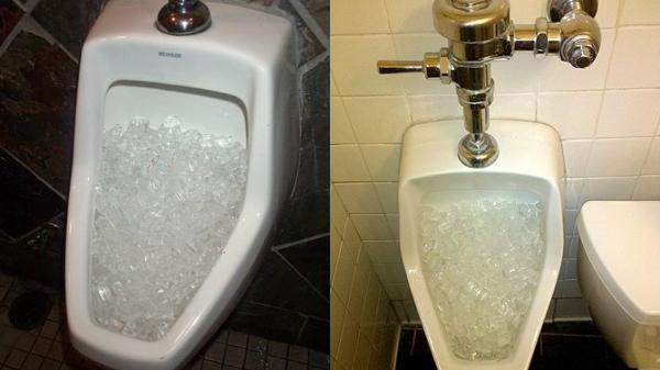 Lý do vì sao người ta hay đổ đá lạnh vào bồn cầu là đây!