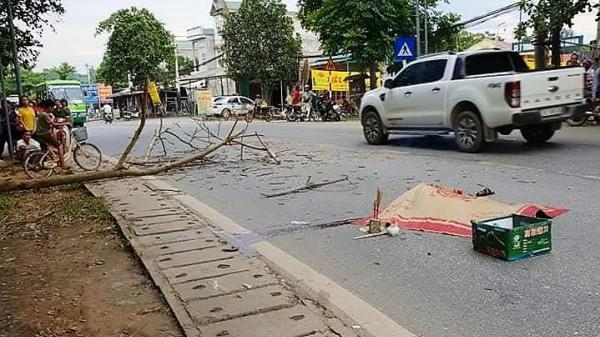 Kinh hoàng: Cành cây rơi trúng xe máy, cặp đôi sắp cưới thương vong
