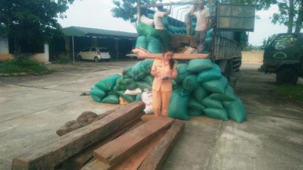 Thanh Hóa: Bắt giữ xe ô tô chở gỗ Giáng Hương quý