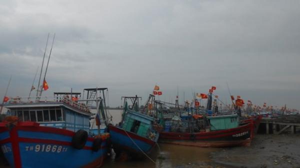 Thanh Hóa: Chưa liên lạc được với 36 thuyền viên trên biển