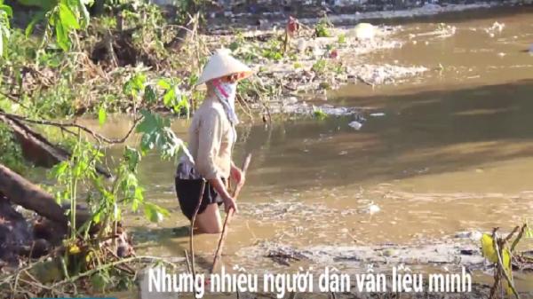 Thanh Hóa: Nhiều người liều mình ra sông vớt củi khi lũ dữ đổ về