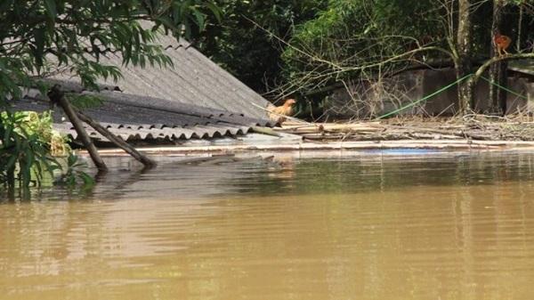 Thêm 11 người chết và mất tích ở Thanh Hóa
