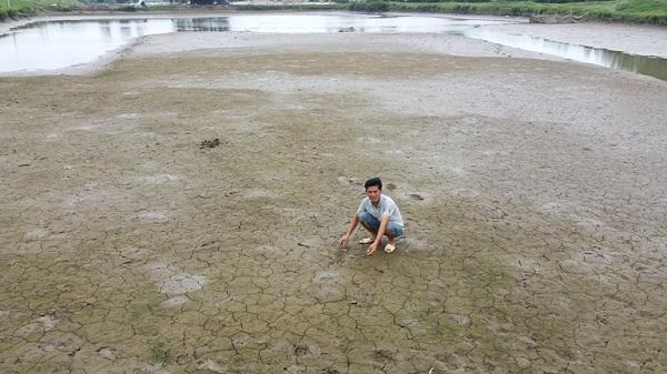 Thanh Hóa: Dân lao đao vì tôm nuôi trong đầm chết hàng loạt