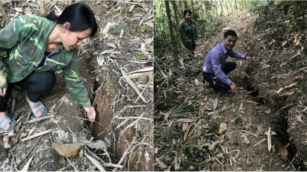 Cẩm Thủy (Thanh Hóa): Cần làm rõ nguyên nhân vết nứt, sụt lún đất đồi kéo dài hàng trăm mét