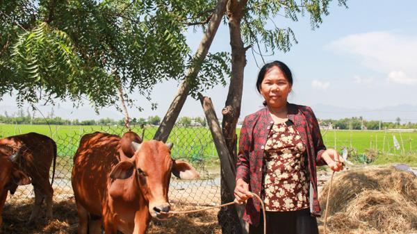 Ninh Thuận: Xã Phước Hữu Quyết tâm đạt chuẩn nông thôn mới trong năm 2018