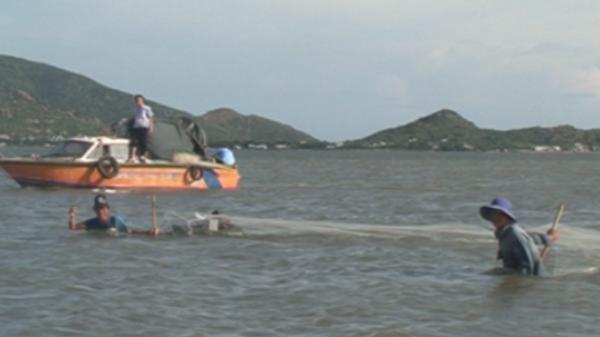Ninh Thuận: Tình trạng đánh bắt cá mang tính hủy diệt tại khu vực Đầm Nại
