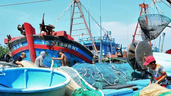 Ninh Thuận: Hiệu quả nghề lưới rê trong đánh bắt hải sản xa bờ