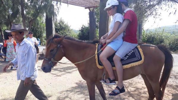 Hứng thú với dịch vụ cưỡi ngựa trên gành Đá Đĩa ở Phú Yên