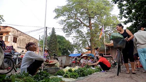 Nét Việt xưa ở làng Nôm Hưng Yên