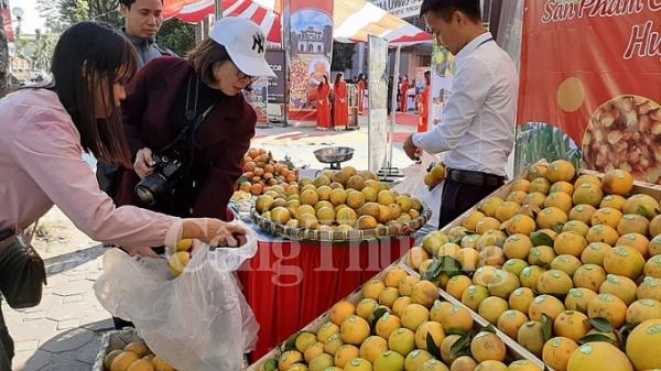 Quảng bá cam và nông sản tỉnh Hưng Yên đến với người tiêu dùng Thủ đô