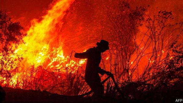 NÓNG: Xảy ra cháy rừng CỰC LỚN tại Bắc Giang
