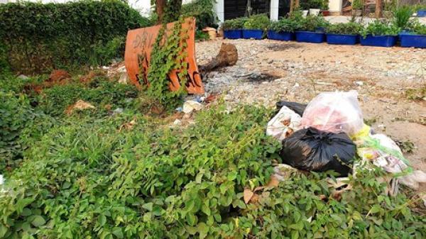 TP.HCM: Từ 1/6, để rác thải tồn đọng, bốc mùi trên đất của mình sẽ bị phạt