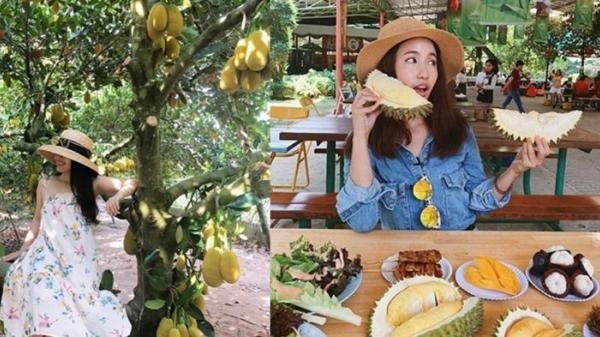 """""""Quẩy tung"""" 5 vườn buffet trái cây ngay sát vách Sài Gòn: Vừa ăn thả ga lại có ảnh """"so deep"""" mang về"""