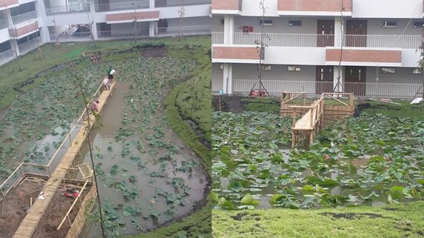 Trường đại học ở Sài Gòn tâm lý xây nguyên ao sen cho sinh viên sống ảo, thế mà vẫn bị chê vì lý do này