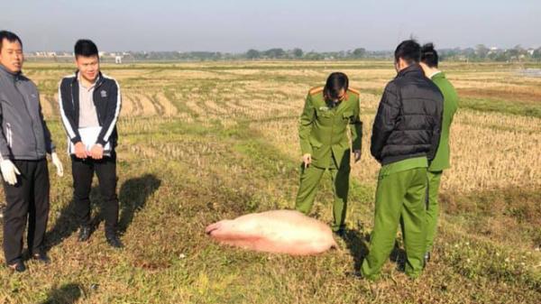 Phú Thọ: Người đàn ông nghi t.rộm lợn để lại xe máy và tang vật rồi bỏ chạy khi bị công an tr.uy đ.uổi