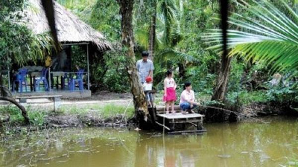 """Cà Mau: Huyện U Minh có thêm điểm Du lịch sinh thái cộng đồng """"Homestay Hương Tràm U Minh"""""""
