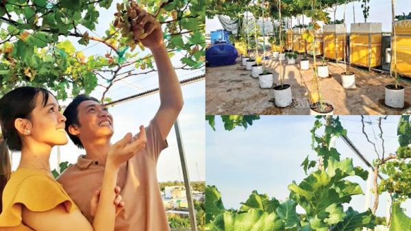 Câu chuyện ngôn tình của đôi vợ chồng trẻ Cà Mau cùng khu vườn tình yêu trên sân thượng