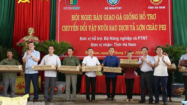 Hà Nam: Hỗ trợ 50.000 con gà giống chuyển đổi vật nuôi sau dịch tả lợn châu Phi