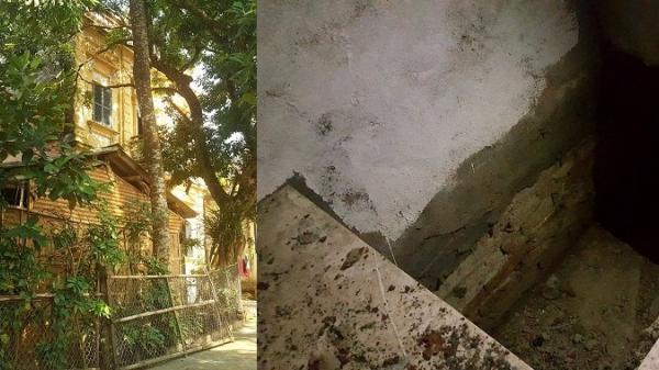 Hà Nam: Những câu chuyện bí ẩn xoay quang những căn hầm dưới nền biệt thự cổ
