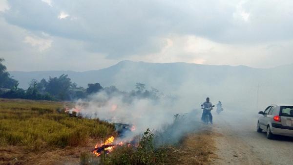 Điện Biên: Nguy cơ ô nhiễm môi trường từ đốt rơm, rạ
