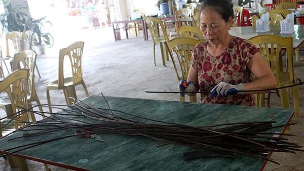 Sản phẩm thân thiện với môi trường: Sản xuất ống hút từ cây dương xỉ