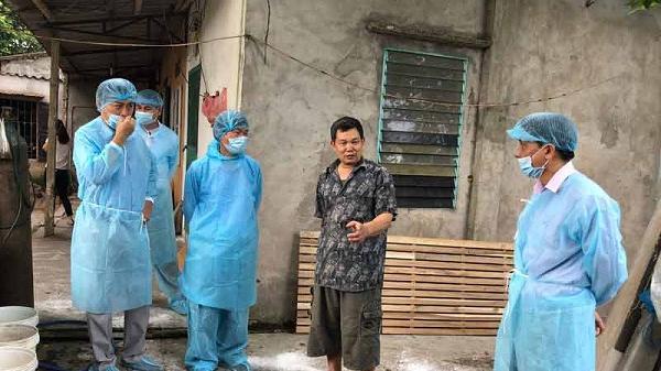 Thành phố Hòa Bình đã xuất hiện 3 ổ dịch tả lợn châu Phi
