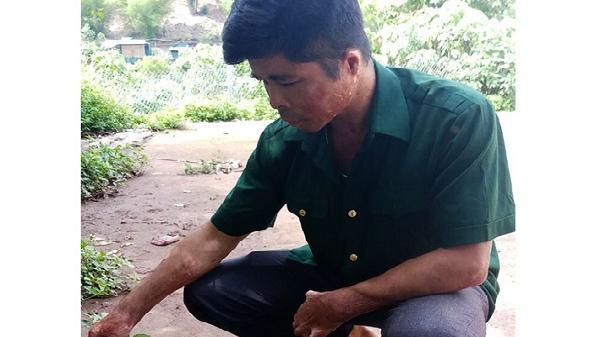 Chuyện những người giữ rừng ở Sín Thầu