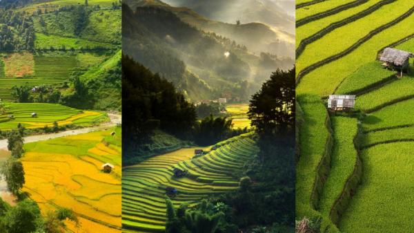 Mù Cang Chải - Hòn ngọc ẩn của Việt Nam