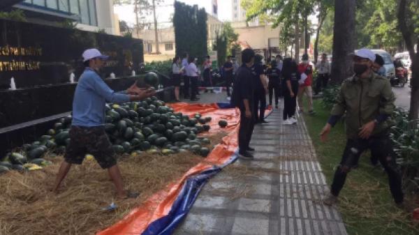 Một tập đoàn mua 10 tấn dưa hấu tặng nhân viên