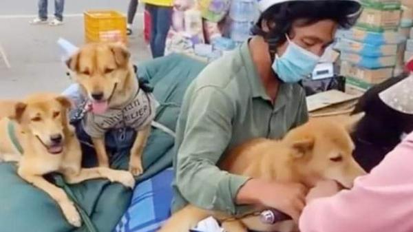 """Nữ trưởng trạm y tế xã ở Cà Mau xin thôi việc vì """"áp lực"""" sau khi xảy ra vụ tiêu hủy đàn chó mèo của người dân"""