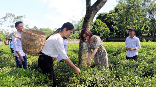 Thái Nguyên: Đại Từ đầu tư gần 300 tỷ đồng để phát triển du lịch