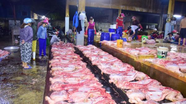 Thừa Thiên-Huế mới đảm bảo được khoảng 75% nguồn thịt lợn cung cấp cho dịp Tết Nguyên đán 2020