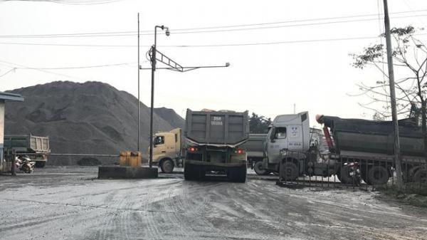 Ninh Bình: Công ty TNHH Long Sơn bị xử phạt 524 triệu vì ảnh hưởng môi trường sống